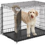 Midwest Homes Ultima Pro metal dog crate.