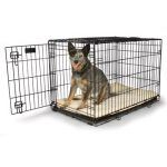 Metal dog crate with dog in it