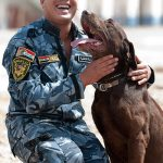 Dogs use their sense of smell for police work