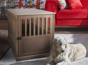 Weimaraners need a large crate like this one