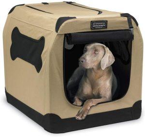 Travel crate with Weimaraner puppy in it