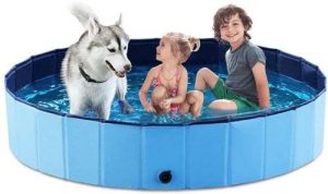 Dog pool with 2 children and dog getting cool in hot weather