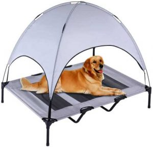 Dog lying on elevated bed with a canopy, to get cool
